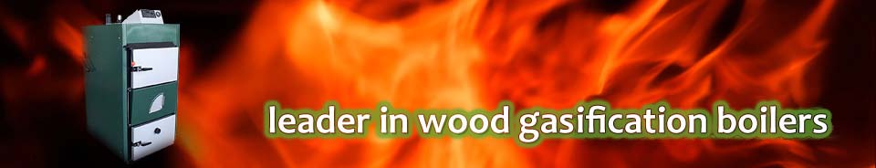 Leader in Wood Gasification Boilers